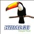 Hidalgo Criação Visual